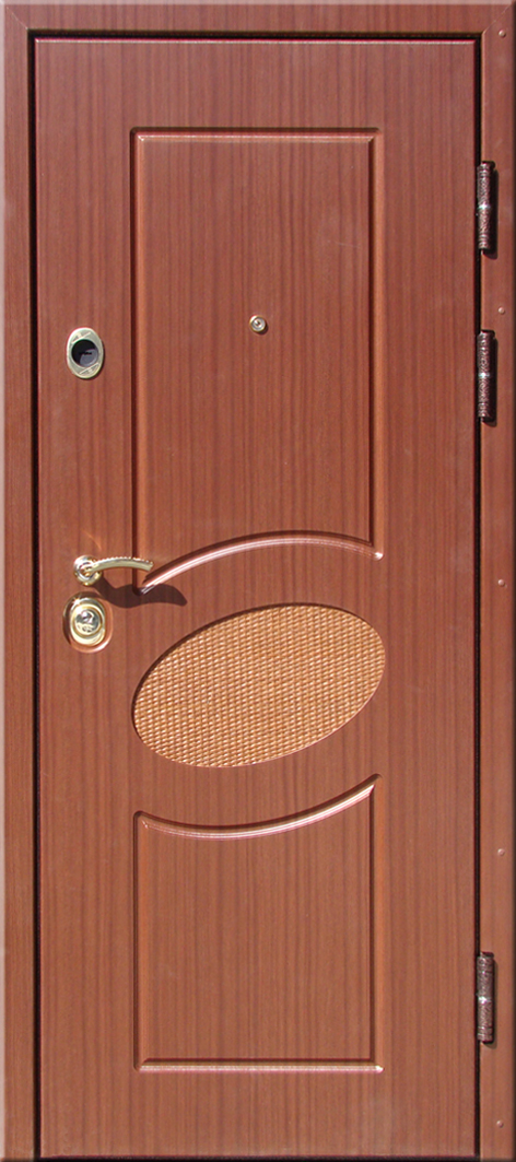 двери технические металлические в гор троицк